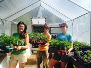 Farmer Katie with interns Brie and Gracie in the green house.