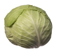 cabbage, green_whole
