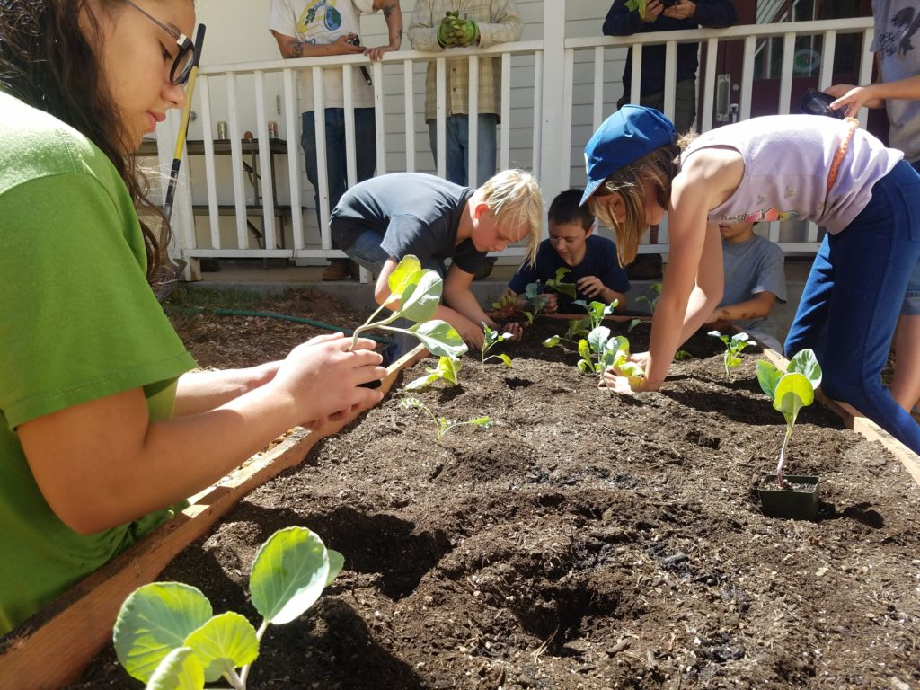 Washington students install a new garden - photo by Larry Diminyatz