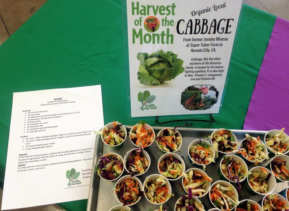 H. High School students sampled Sambal, an Asian-inspired slaw, made by the Nevada Union culinary class featuring cabbage from Super Tuber Farm.