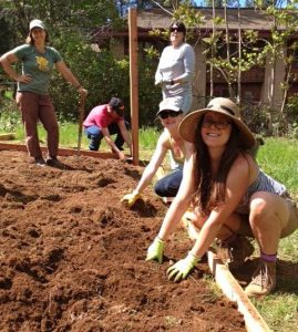 volunteer with sierra gardens 2016