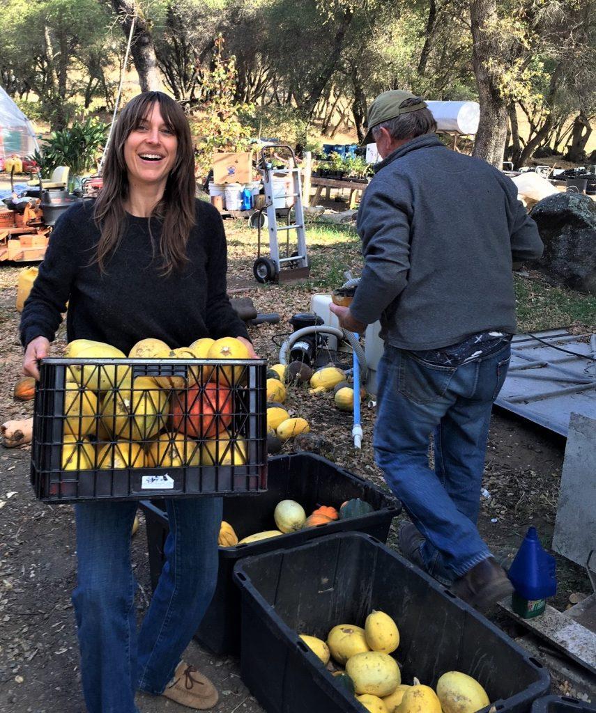 nicole stevenson - volunteer harvest leader 2019