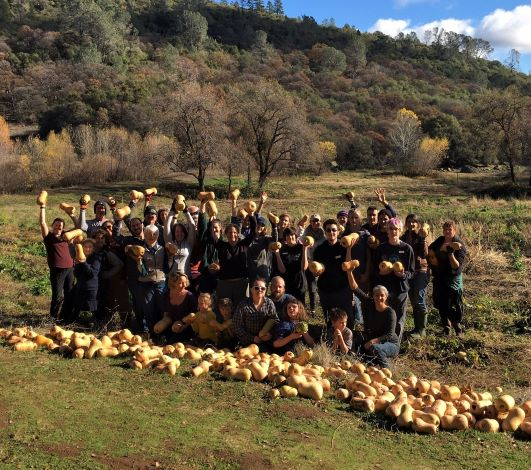 largest glean 2019 johnasen ranch - butternut squash - gold country gleaners