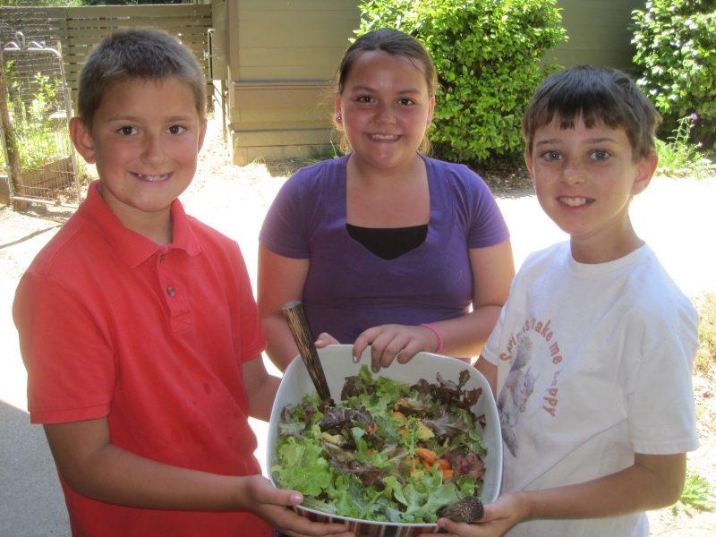 3rd grade garden school salad