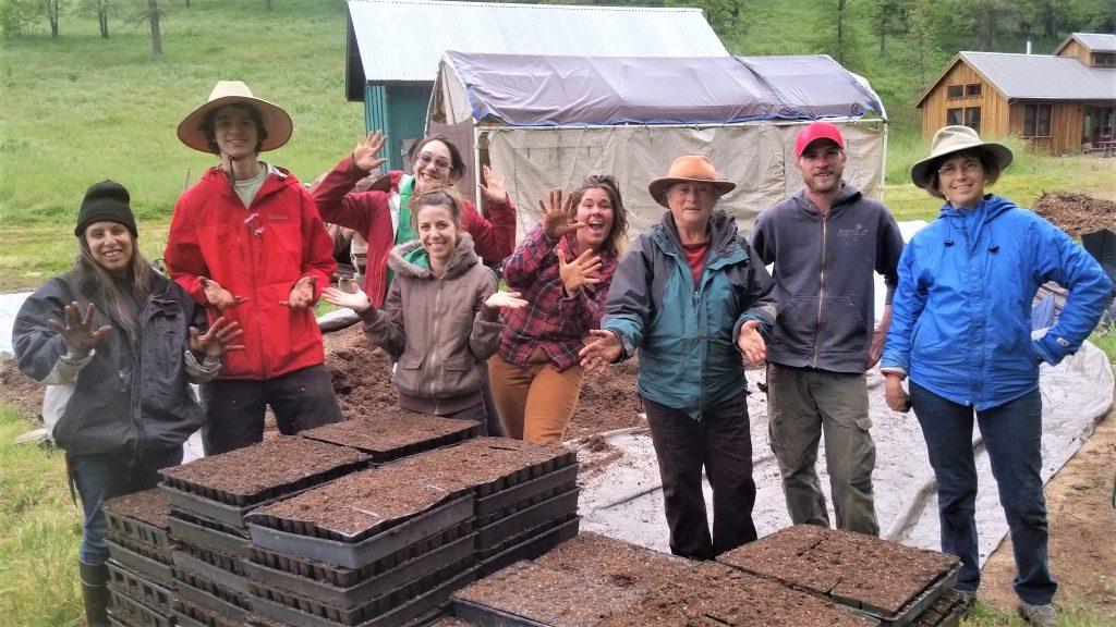 farm crew 2017 - Sweet Roots Farm