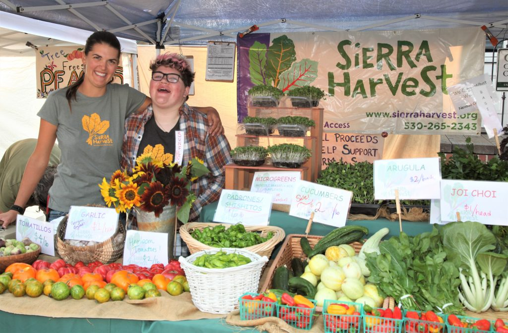 farmers' Market - Sierra Harvest in Nevada City 2016