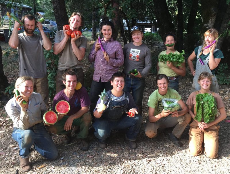 2019 mountain bounty farm crew